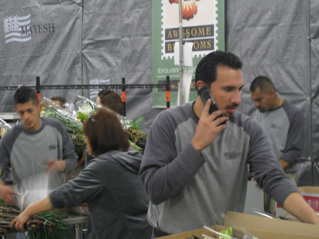 The Busy Sales Associates at Mayesh Wholesale in Los Angeles