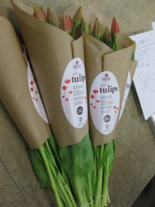 Craft Paper Wrapped Soil Grown Sun Valley Tulips heading home to Happy Flower Buyers