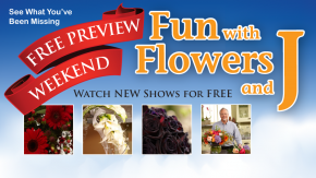 Fun with Flowers and J Preview Weekend November 24-28 !