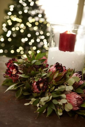Made in America Christmas... Protea, Candles, and Snow...