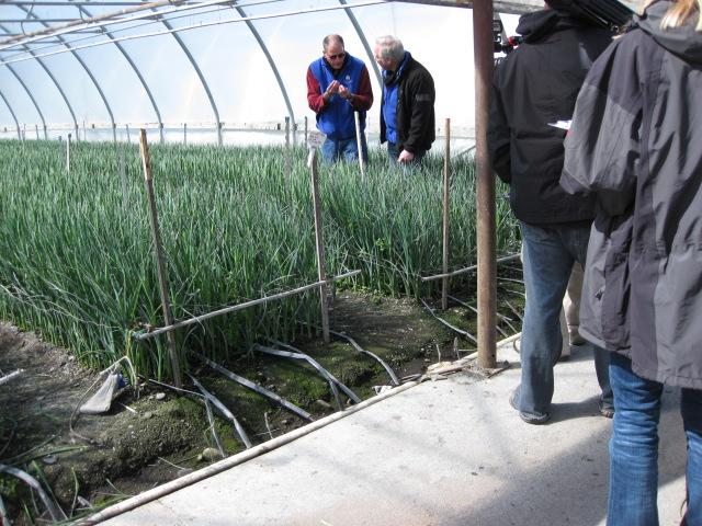 Lane and J at Sun Valley Iris Greenhouses in Arcata!