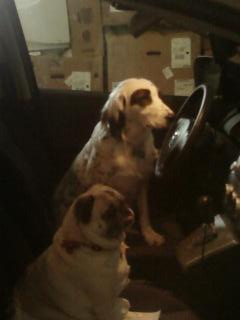 Apple Creek Flowers' Delivery Team: Chloe and Maggie!