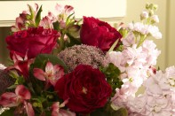 How to Cut and Arrange Flowers_The Basics