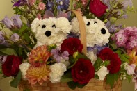 How to make a Puppy Basket Arrangement