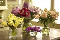 How to Arrange Flowers… Basic Flower Arranging Techniques using Ocean View Flowers CA GROWN Stock!