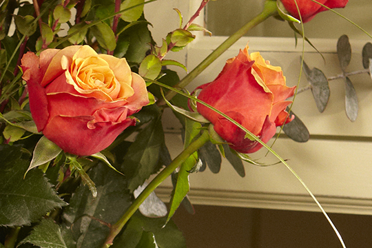 How to create Vase Arrangements QUICKLY and EFFICIENTLY for the Holidays