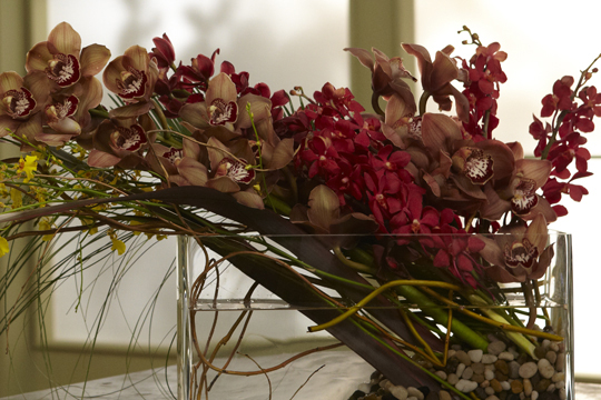How to Arrange Flowers- Orchid Arrangements