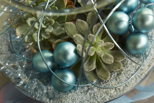 How to arrange flowers- Christmas Terrarium with Succulents