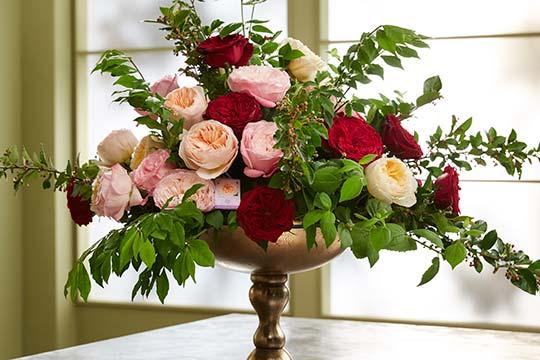 How to Arrange Flowers_David Austin Rose Arrangement