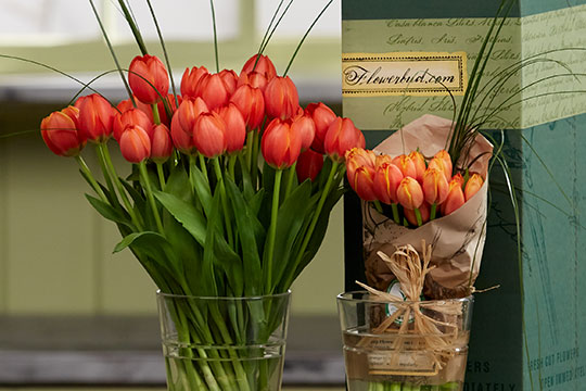How to Arrange Flowers_Tulips - From Flowerbud.com