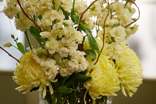 How to Arrange Flowers_Easy Arrangements with Spray Stock and Chrysanthemums!