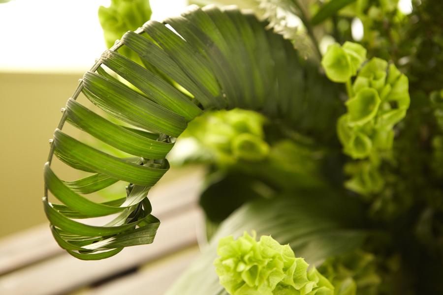 Weave a Palm Leaf