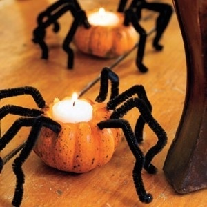 Decorate your pumpkins for Halloween with these fun DIY Projects!