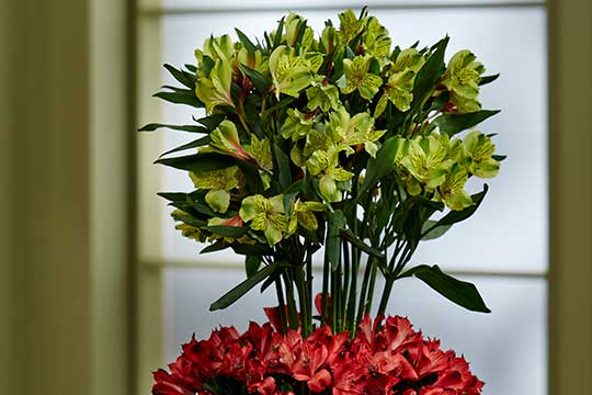 Alstroemeria Event Centerpiece