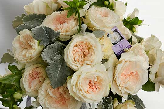 """Purity"" Garden Rose Wedding Bouquet"