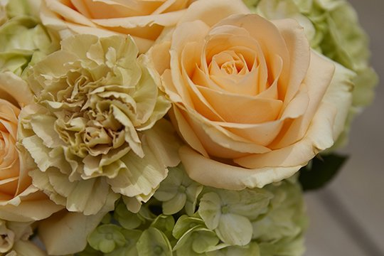 Hydrangea Arranging Tips!