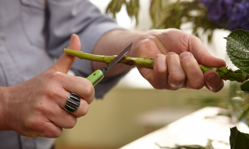 Flowers 101- Knife Cutting Tips from J