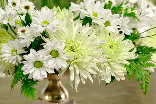 Cloche' Wedding Arrangement with Chrysanthemums from DeliFlor
