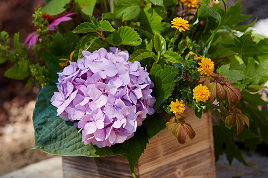 No matter what tools you choose- flower arranging is relaxing and helps us feel happier- proven fact!