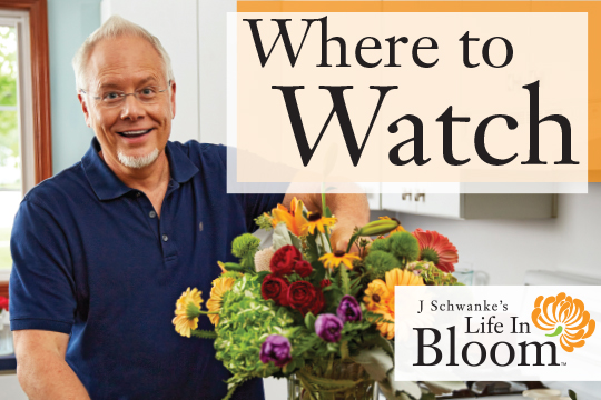 Watch Life in Bloom on PBS