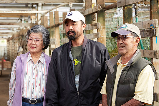 The Akiyama Family- Japanese Americans farming carnations with their son Ben.