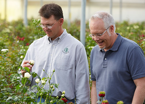 Chad shows J the New Garden Rose Varieties at Eufloria Flowers!