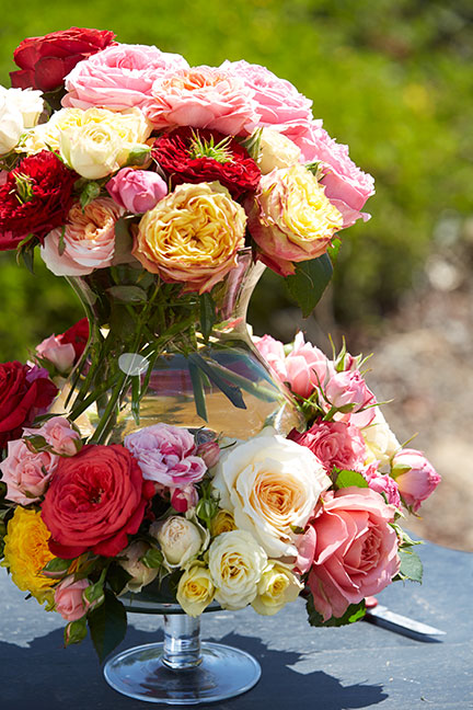 J took the time to create an arrangement from the Prettiest Roses on the Planet at Eufloria Flowers!