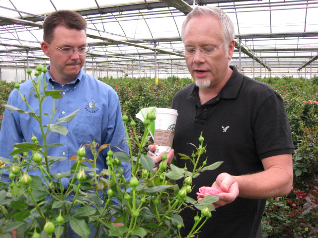 Chad Nelson and J Schwanke discuss new spray rose varieties!