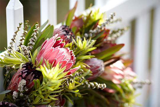 Wreaths are just one of the Protea Products you can purchase in the Protea Store!