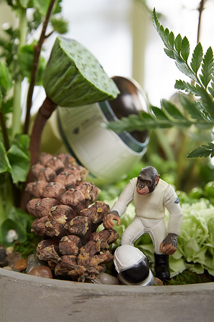 With a crash landing- J adds a little fun with action figures in the Florida Fern Arrangement!