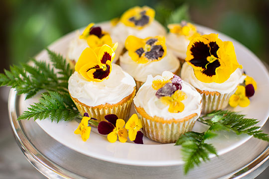 Add Edible Organic flowers to your cupcakes and create a Recipe in Bloom!