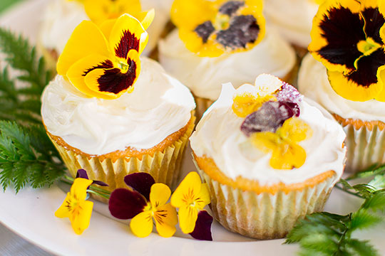 Edible Organic Flowers can be added to your cupcakes- with this Recipe in Bloom from J Schwanke!