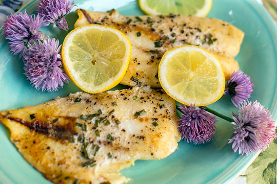 J Schwanke's Life in Bloom Recipe for Orange Roughy including Chive Blossoms and Fresh Lemon!