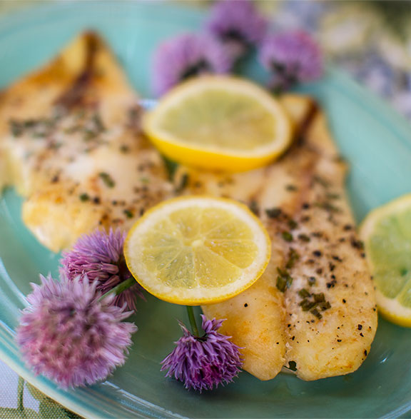 Chive Blossoms and Lemon wheels are the perfect garnish for J Schwanke's Life in Bloom Orange Roughy Recipe!