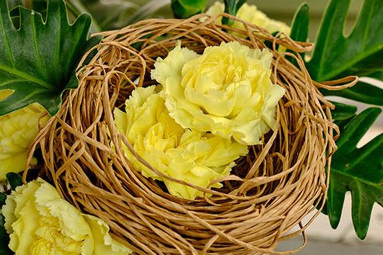 Bind-wire Nest
