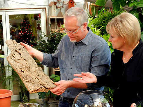 My Sister Cindy uses bark to create retaining walls inside her magical terrariums on Life in Bloom!