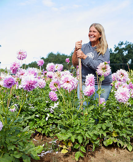 Happy to be growing Dahlias on her farm in Hamilton Michigan- Jan Brondyke loves the Flowers!
