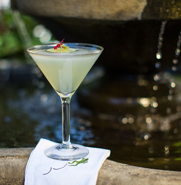 Featured on J Schwanke's Life in Bloom- this Frog inspired cocktail is a #flowercocktailhour Favorite!