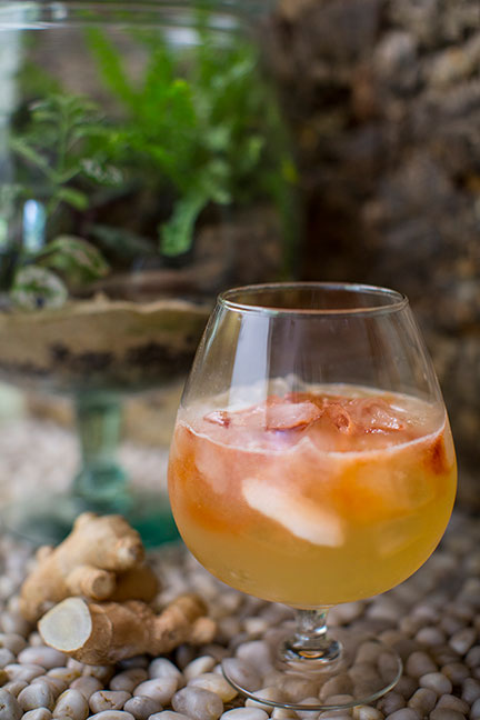 This refreshing summer cocktail features Elderflower Liquor - Fresh Lime and Bitters.