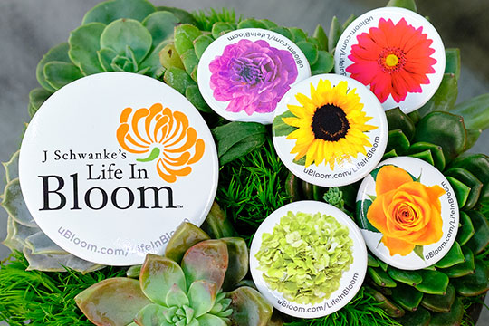 Life in Bloom Buttons