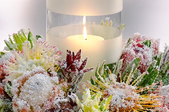 Snowy Protea Centerpiece