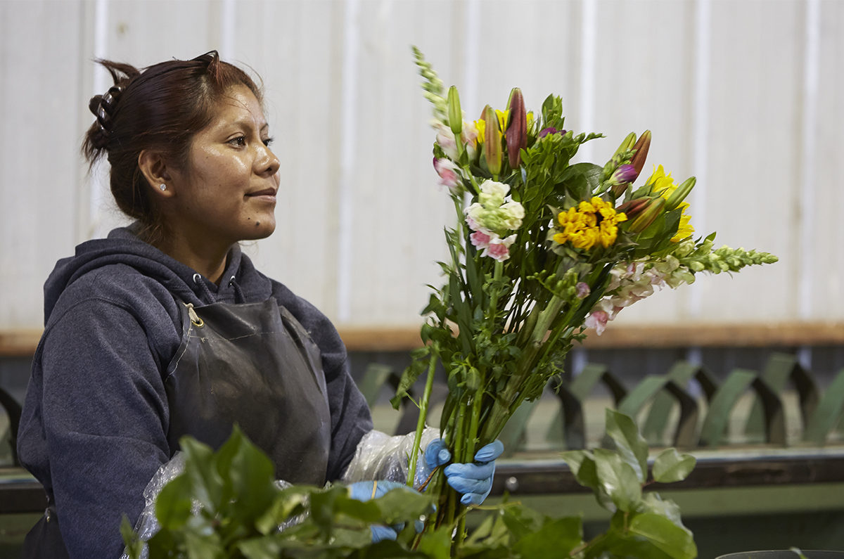 Holland America- making bouquets safely - with physical distancing... Flower Power!