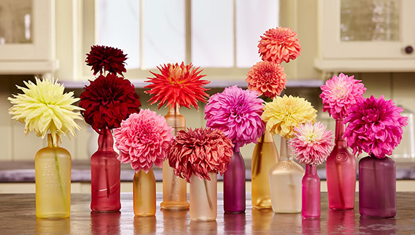 It's easy to recycle and re-purpose glass bottles with Design Master- and a few flowers!