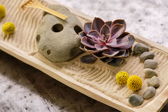 Host J Schwanke explores the wonderful traditions of Japanese Flower Design: Ikebana flower arranging, Zen gardens, and bonsai. He visits a Japanese garden, speaks with a Bonsai Club, and shares his knowledge of Ikebana Flower Design.