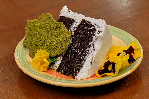 "Edible ""Moss Cookies"" provide the edible accent for this fun Recipe in Bloom!"