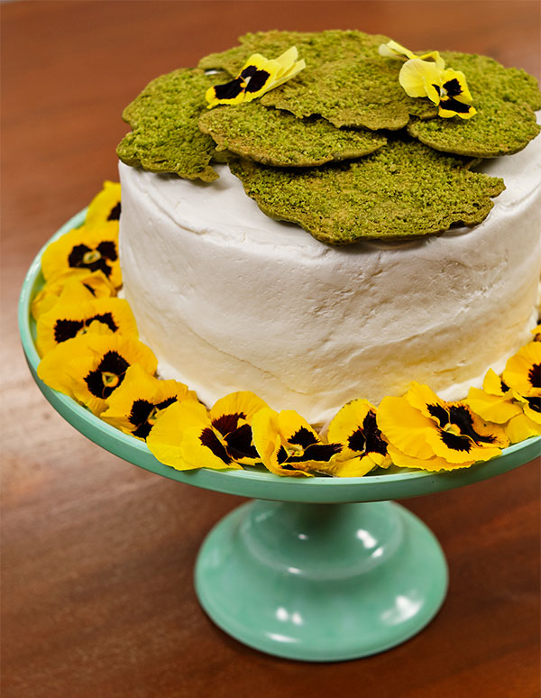 Decorate your Moss Cookie Cake with organically grown- edible flowers- Viola- Now you can eat your Flowers (and Moss!)