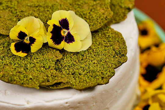 A Few simple twists turn sugar cookies into moss accents for a lovely recipe in bloom!