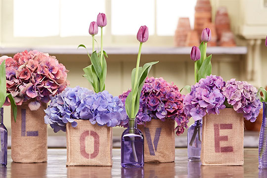 "Host J Schwanke shows you how to think ""outside the vase"" when it comes to arranging & displaying your flowers. J visits an Antique Market, uses found containers, and upcycles existing ones—the possibilities are endless!"