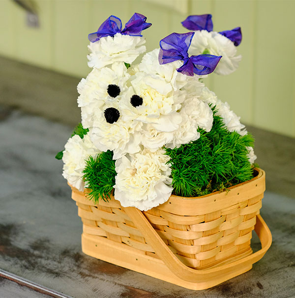 Create your own Flower Puppy (or Kitty) with these easy steps - it's a fun project for Kids!