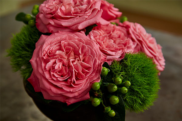 J uses just a few O'hara Garden Roses in this simple arrangement with Hypericum and Green Trick Dianthus